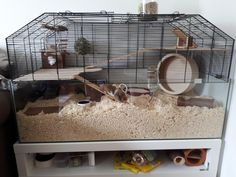 Cleaned our little puffers cage today and thought I'd share my set up with you! Suggestions for improvement are very welcome :) Hamster Life, Hamster Habitat, Baby Hamster, Hamster Toys, Cool Hamster Cages, Gerbil Cages, Cute Small Animals, Small Animal Cage, Hamsters