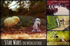[FOTO] Star Wars in miniatura: epiche avventure reinterpretate da Zahir Batin