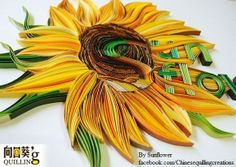 By Sunflower