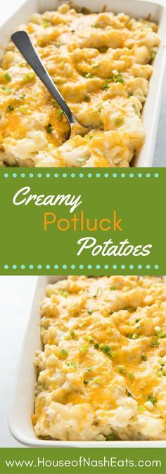 Creamy Potluck Potatoes are total comfort food! Cheesy and savory this is the perfect casserole side dish to serve a crowd whether its a holiday dinner family reunion or church potluck!