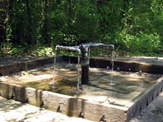 God's Acre Healing Spring is a Photo Op in Blackville. Plan your road trip to God's Acre Healing Spring in SC with Roadtrippers. Stuff To Do, Things To Do, Angel Oak, Mountain Waterfall, Lets Run Away, Nc Mountains, Spring Nature, Unusual Things, South Carolina