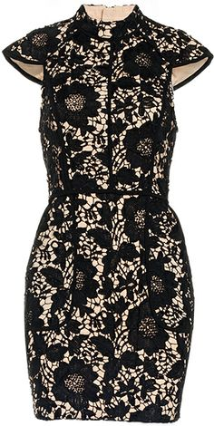 Cameo Brake Light Lace Dress. It would be cuter if it was strapless.