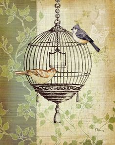Printable image for decoupage and transfer purposes - birds