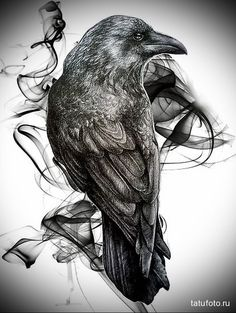 эскиз черный ворон тату 2: