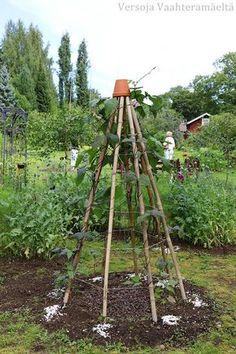 Visit Us For More Garden Arbor Inspirations Allotment Gardening, Potager Garden, Garden Arbor, Veg Garden, Vegetable Garden Design, Garden Trellis, Garden Cottage, Garden Beds, Garden Landscaping