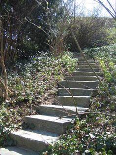 Stairs at the Dunbarton Oaks garden.