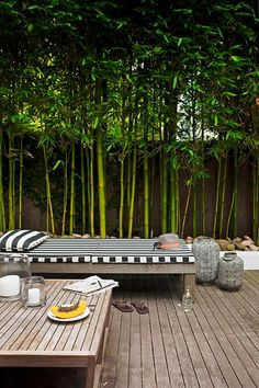 Garden Screening Ideas - Screening can be both ornamental as well as functional. From a well-placed plant to maintenance free fencing, here are some imaginative garden screening ideas. Back Gardens, Small Gardens, Outdoor Gardens, Tropical Gardens, Outdoor Rooms, Outdoor Living, Outdoor Benches, Outdoor Furniture, Garden Screening