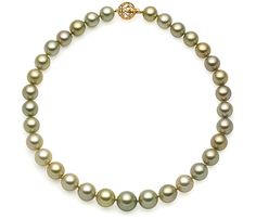 Eliko Pearl South Sea and Tahitian pistachio pearl strand necklace