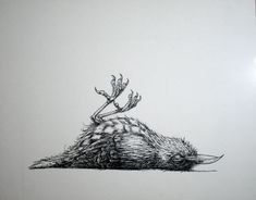 Roa - Dead Bird.jpg 650×508 pikseliä