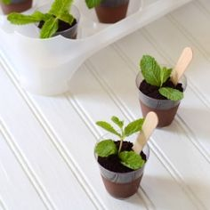 """For garden party.PLANT DESSERT: chocolate mousse/pudding """"soil"""" + oreo crumbs """"dirt"""" + mint leaf """"plant"""" + wooden spoon """"plant labeller""""here Chocolate Pudding, Chocolate Desserts, Chocolate Cream, Chocolate Cups, Decadent Chocolate, Snacks Für Party, 31 Party, Wedding Desserts, Wedding Cake"""
