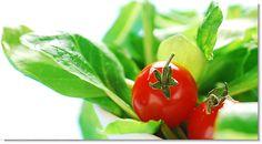 Health and nutrition || Image Source: http://kyrinhall.com/wp-content/uploads/2012/04/Orthomomedizin-gross.jpg