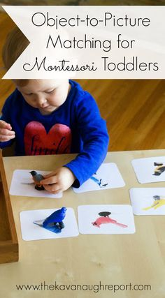 Object-to-Picture Matching for Montessori Toddlers. Pre-reading work that helps toddlers start thinking in the abstract.