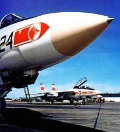 VF-1 Wolfpacks F-14A Tomcat