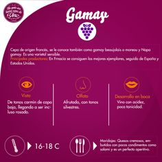 Deliciosos vinos que podemos disfrutar! Ricos vinos Gamay!