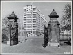 Dijkzigt ziekenhuis vanuit Het Park (Westzeedijkingang 1953)