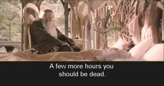 Excerpts from the bootleg LoTR DVDs with bad Chinese subtitles (18/21)