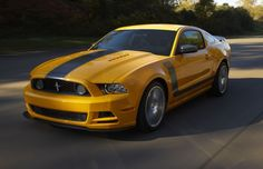 2013 Mustang.. kinda an ugly color.... yellow and black... hmmm idk