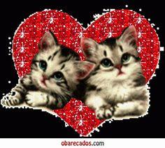 Ambrosia charm bracelet cat lover dating