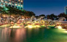 Mustangs of Las Colinas in Irving #DFWandBeyond