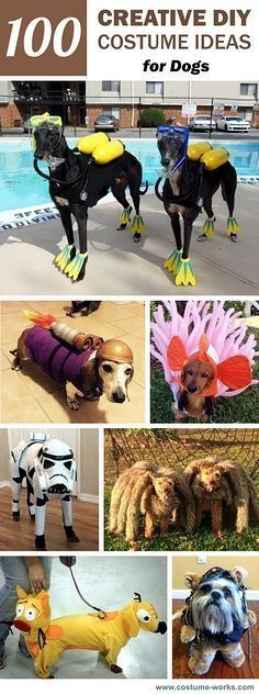 Looking to get creative with your dog's Halloween costume? Here are 100 Creative DIY Costume Ideas for Dogs. www.bullymake.com