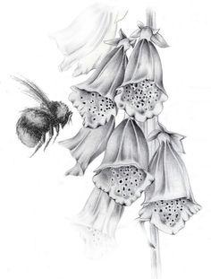 Bee and foxglove tattoo idea