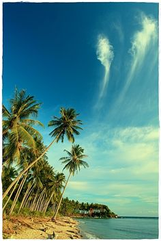 Tourist Information · Bone Pantai · Gorontalo · Beach · Indonesia · Colores · Sky · Blue · Clouds · Sand · Palms · Vacations · Travel · Adventure Vacation Trips, Vacations, Tourist Information, Blue Clouds, Adventure Travel, Beautiful Places, Sky, Palms, Beach