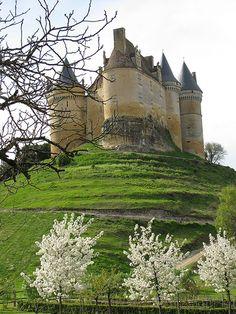 Chateau de Bannes, Dordogne, Aquitaine, France