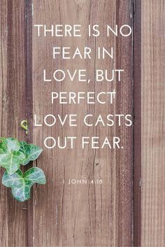 After parenting children with behavioral and special needs for many years as a foster and adoptive mom, this is what I wish you could see from behind the scenes about my kids. I'm not asking for special favors, but I do appreciate understanding. There is no fear in love!