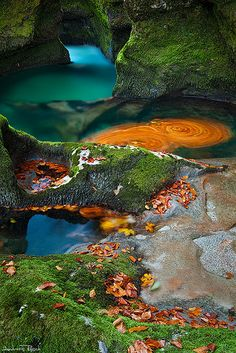 The swirl is a result of trapped rotating orange leaves for 67 seconds. The water of the stream is inheriting the rotation to the corner as it's passing by.  Location: Stara Fuzina, Triglav, Slovenia