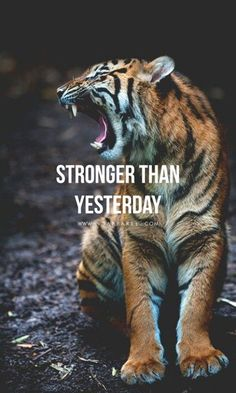 Be stronger than yesterday | quotes for life | | motivational quotes | | inspirational quotes | | quotes | #quotes #motivationalquotes https://www.ninjaguide.com/