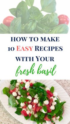 I love cooking with fresh basil. My easy fresh basil recipe, Caprese… (Favorite Pins Cooking) Easy Dinner Recipes, New Recipes, Salad Recipes, Easy Meals, Dinner Ideas, Fresh Basil Recipes, Healthy Snacks, Healthy Recipes, Delicious Recipes