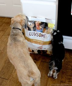 LUVSOME pet food giveaway from www.cookingwithruthie.com. Ends August 2014.