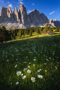 Dolomites ~ Italy