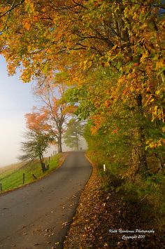 Great Smoky Mountains National Park - Fall Colors on the Loop Road in Cades Cove by Keith Nicodemus Photography, via Flickr