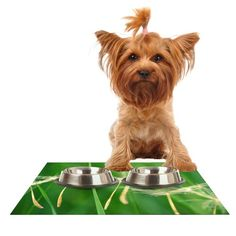 Kess InHouse Robin Dickinson 'Best Wishes' Green Flower Feeding Mat for Pet Bowl, 18 by 13-Inch * Continue to the product at the image link. (This is an affiliate link) #CatLovers