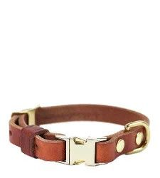 Leather dog collar from Brook Farm General Store (such a cool site): http://www.brookfarmgeneralstore.com/products/Leather-Dog-Collar.html#