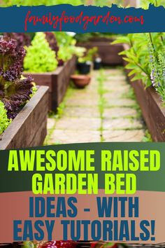 With the many benefits of erecting a raised garden bed, you want to check out Family Food & Garden's comprehensive guide on this topic. The variety of resources that can be used are many. There are several materials to choose from in building a raised garden bed. With so many choices available, this is an opportunity you won't want to pass up. Our step-by-step instructions will make the gardening experience easy. Read more. #raisedgardenbed #diyraisedgarden #raisedgarden Raised Garden Bed Plans, Building A Raised Garden, Container Gardening, Gardening Tips, Healthy Fruits And Vegetables, Small Trees, Growing Plants, Step By Step Instructions, Vegetable Garden