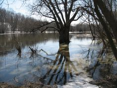 File:Eramosa River in Guelph Ontario early spring.jpg