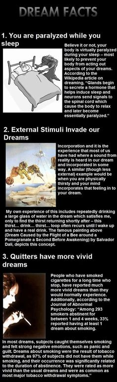 Funny pictures about Dream facts that will shake you. Oh, and cool pics about Dream facts that will shake you. Also, Dream facts that will shake you. True Facts, Funny Facts, Weird Facts, Strange Facts, Random Facts, The More You Know, Did You Know, Facts About Dreams, Dream Meanings