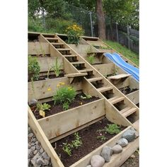 Lovely hillside garden, steps slide. Veggie Garden