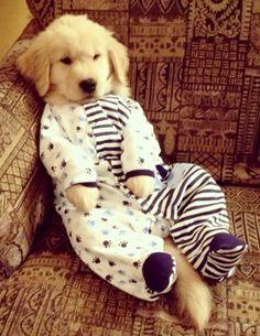 I'm ready to sleep!