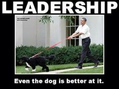 Oh yea. Even the WH dog is a better leader!! #tcot #kjrs #teaparty #LNYHBT #ObamaFAIL #theblacksphere