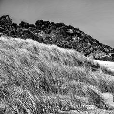 Black and White Landscapes – Enriching Tones and Textures.    Click Here: Black and White Landscapes – Enriching Tones and Textures.