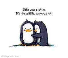 I like you a lot.