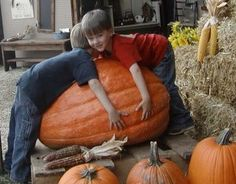 Paul's Pumpkin Patch