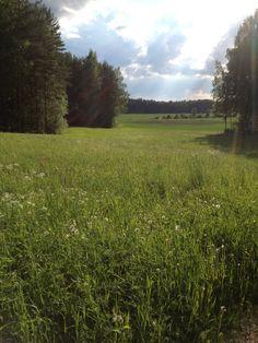 Parikkala, Finland Koti, Summer Feeling, Peace Of Mind, Forests, Rivers, Wonderful Time, Ash, Natural Beauty, Woods