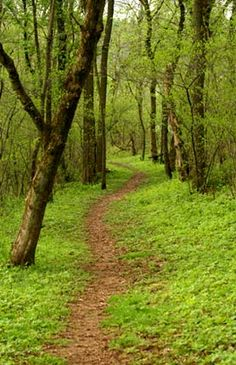 Appalachian Trail HA! I'm already there!