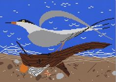 Tern Scape - click here for more details