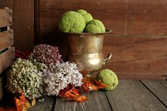 Organic Hedge Apples, Set of 3 Hedge Apples, Real Osage Oranges, Monkey Balls, Natural Fall Decor, Halloween Decor, Fall Wedding, Woodland by OurVintageBungalow on Etsy