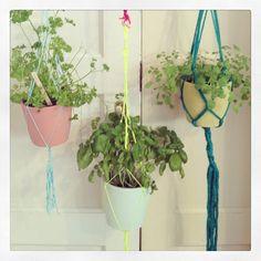 """@Nancy Berendsen's photo: """"#Hangingplants @Liesbeth Bishop meijerën D.I.Y. magazine #woonbeurs #mtbams"""" #instagram"""